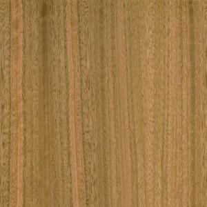 Eucalyptus QTR PLN