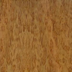 Eucalyptus Pomele